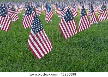 Thousands of american flags set up in a field as a 9/11 memorial