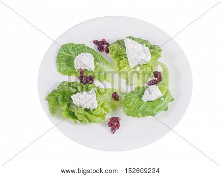 Home-made feta cheese on lettuce with cranberries