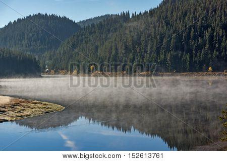 Reflection of green forest in  Golyam Beglik Reservoir, Pazardzhik Region, Bulgaria