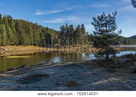 Amazing landscape of Green forest of Shiroka polyana Reservoir, Pazardzhik Region, Bulgaria