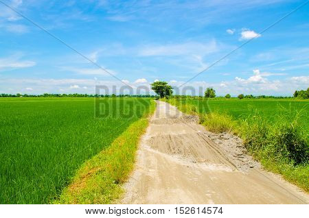 Rural area in the countryside of Luzon island in the Philippines
