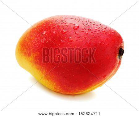Fresh mango fruit isolated on white background. Closeup.