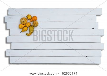 Ornamental Pumpkins On Wooden Panels