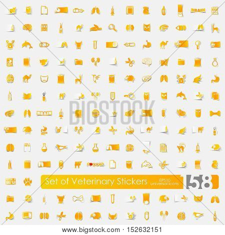 veterinary vector sticker icons with shadow. Paper cut