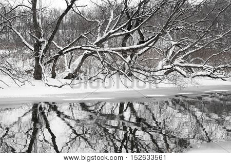 River Landscape By Winter