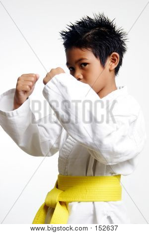Young Karate Kid
