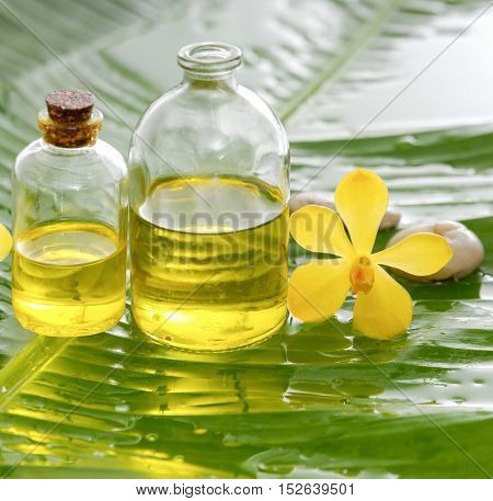 banana leaf with massage oil,orchid,stones