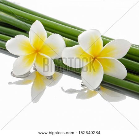 Set of two frangipani with bamboo grove