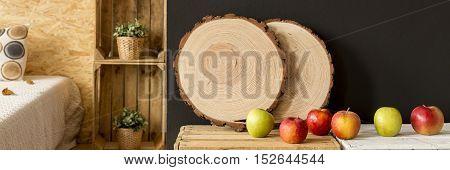 Decorative Tree Slice