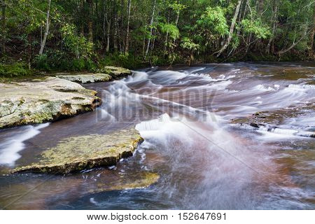Stream in the tropical forest at Phu Kradueng national park Loei Thailand.