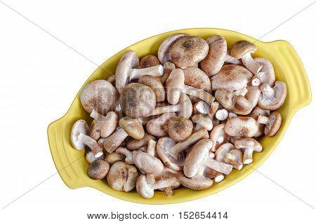 Raw fresh mushrooms in a roasting pan, isolated on white background