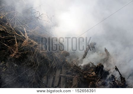 The process of burning trash in autumn. Wood weeds hay in white smoke.