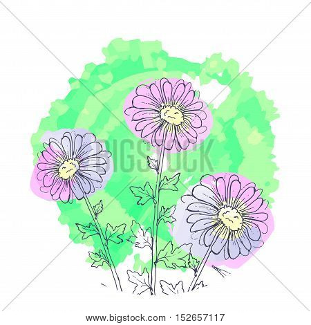 daisy flowers, floral vector set of ink drawing wild plants, monochrome black elements
