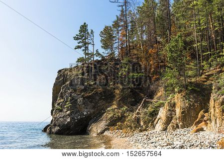Coniferous forest grows right to the edge of the cliff on the shore of lake Baikal.