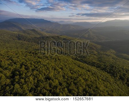 Mountain Forest And Cloudy Dramatic Sky.