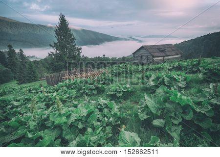 shepherd house in high mountain, toned like Instagram filter