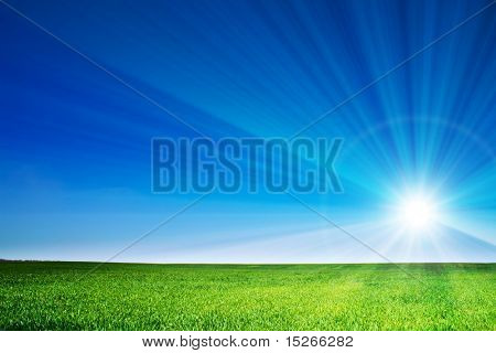 beautiful landscape, green grass, blue sky
