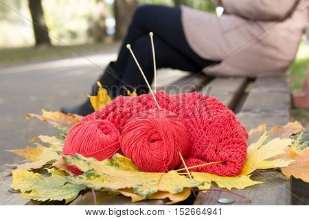 Skeins of yarn and knitting openwork are in a park on a bench. Yellow fallen leaves in autumn.