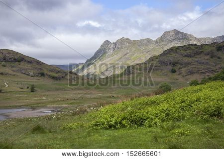 Blea Tarn, The Lake District, Cumbria, England