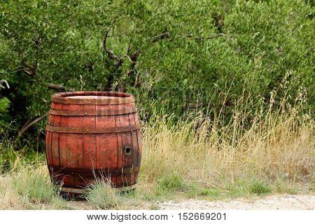 Wine barrel traditional oak wood cask tierce hogshead coopered wooden container closed with cork on natural background