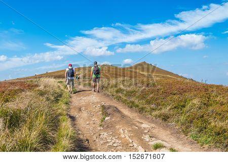 Tourists trekking on Polonina Wetlinska, Bieszczady mountains, Poland