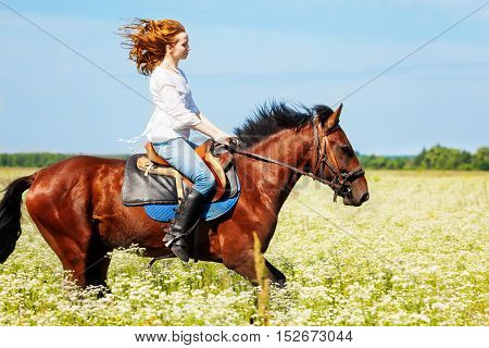 Side view portrait of young woman galloping horseback on bay horse in flowery meadow