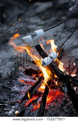 Marshmallows roast on bonfire in the evening. Roasting marshmallows on bonfire late in the evening with sparkles coming up from the fire.