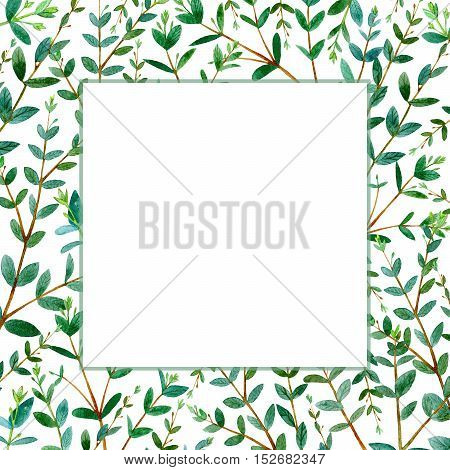 Frame with eucalyptus branches.Green floral border.Watercolor hand drawn illustration.