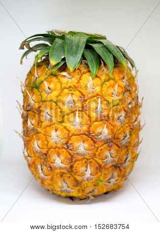Pineapple with small leaves on top on white background. Yellow ripe exotic fruit for healthy vegetarian dessert. Pine skin surface picture. Tropical garden harvesting. Juicy and fresh pineapple image