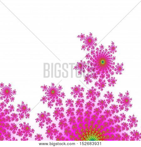 Pink and white decorative floral background image