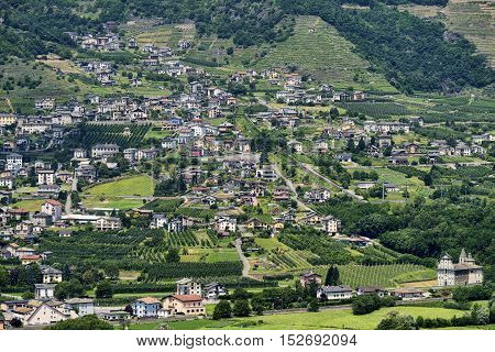 View of Valtellina from the road to Passo Aprica (Sondrio Lombardy Italy) at summer. Vineyards