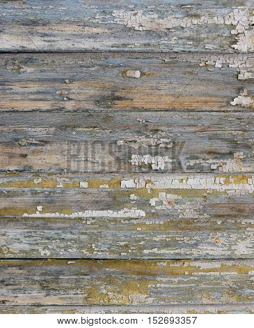 Old painted beige wood wall texture or background