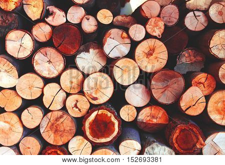 Full frame round red timber texture background.