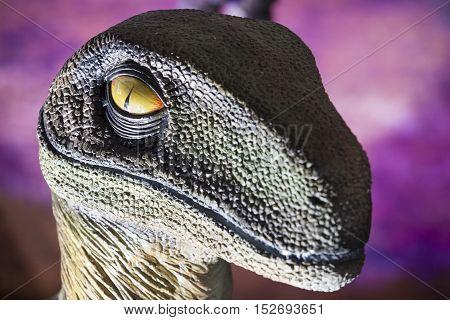 Badajoz. Spain - October 15 2016: Realistic model of dinosaur at Ifeba Expojurasico Exhibition. Velociraptor