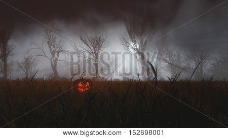 Halloween Pumpkin In Misty Field At Moonlight.