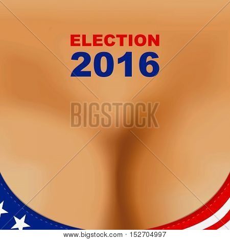 Usa 2016 Presidential Election Poster. Woman Breast Bra