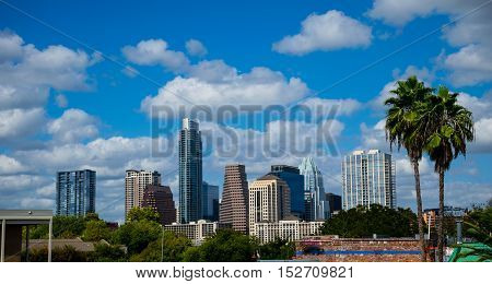 Austin Texas Tropical Paradise view with Two Palms Trees next to Downtown Skyline Cityscape on a perfect nice Sunny Day with the Frost Bank Tower in View