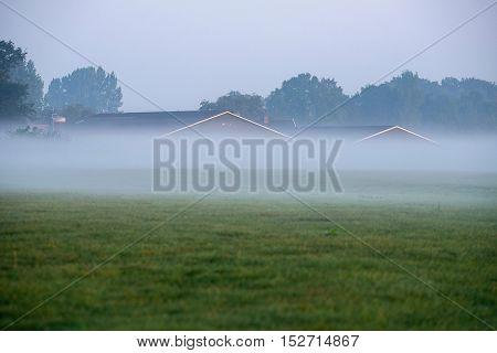 Cattle stables of farm in morning mist. Geesteren. Gelderland. The Netherlands.