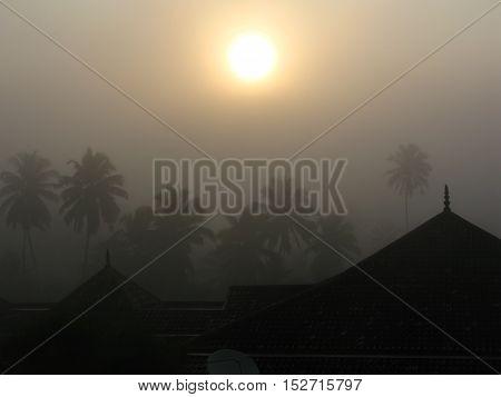 Foggy sunrise over palm trees and the temple, Bentota, Sri Lanka