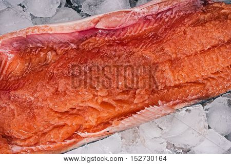 Middle part of fresh salmon fish on ice. Flat lay