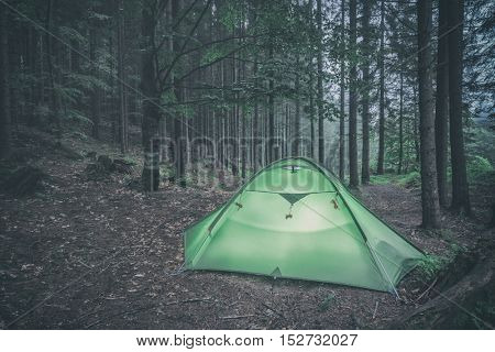 green tent on forest closeup, toned like Instagram filter