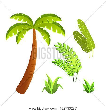 Jungle leaves and grass elements. Editable vector set
