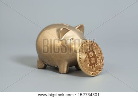 Golden Piggy bank with One Golden Bitcoin coin (new virtual money ) on a gray background