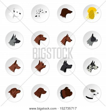 Dog head icons set. Flat illustration of 16 dog head vector icons for web