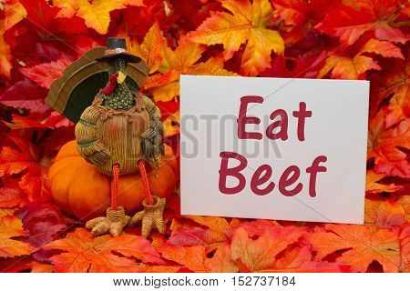 Funny Thanksgiving message Some fall leaves and a turkey sitting on a pumpkin and a gift tag with a blank gift tag with text Eat Beef