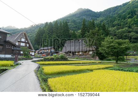 Gassho Zukuri (Gassho-style) House in Shirakawa-go area of Gifu, Japan. Shirakawa-go was registered as an UNESCO World Cultural Heritage site