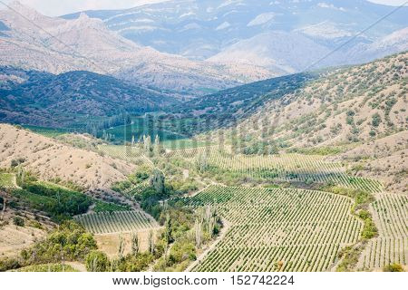 Beautiful landscape with hills covered by trees and agricultural fields
