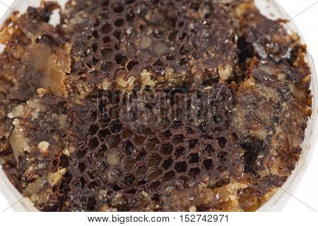 Honeycomb close up on a white .