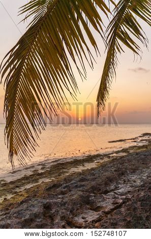 Romantic Sunset On A Desert Island, Maldives
