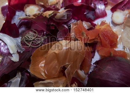 Cooking background vegetable waste like red and brown onion peel and tomato pieces left from preparing food selected focus narrow depth of field
